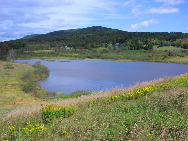 NRCS and USFS press release image